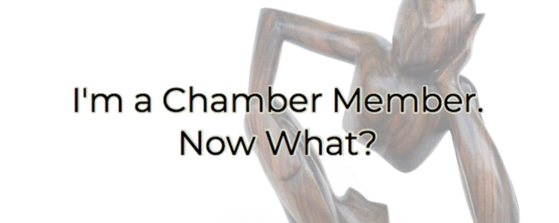 I'm A Chamber Member - Now What?